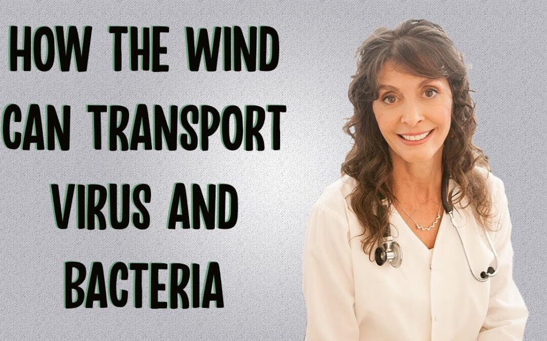 How the Wind can Transport Bacteria and Viruses