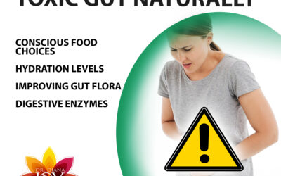 What Is Toxic Gut and How to Fix It Naturally