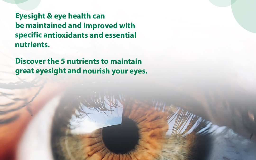 Foods for Healthy Eyes! 5 Essential Nutrients for Eye Health